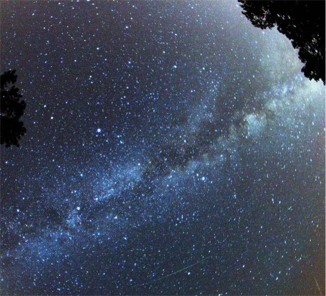 662px-Perseid_Meteor