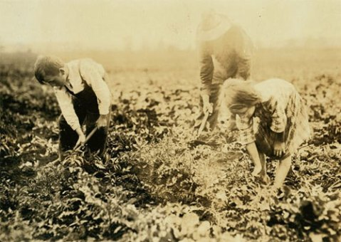 Corunna, Michigan beet farmers by Lewis Wickes Hine