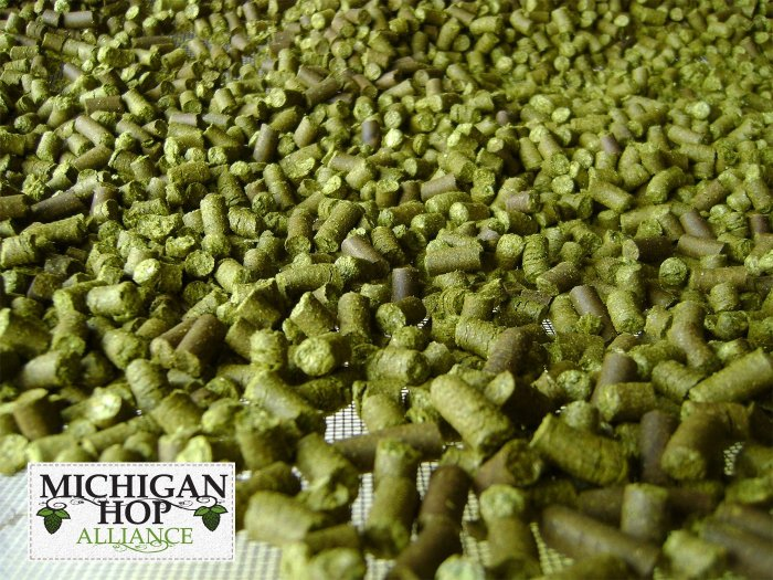 Michigan Hops Michigan Hop Alliance