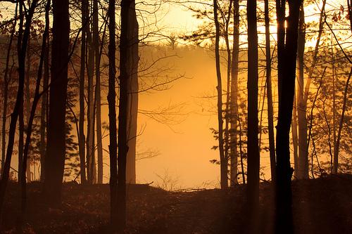 Dollar Lake Foggy Sunrise