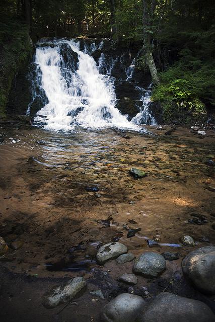 9358 Morgan Falls