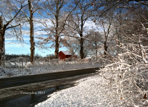 Snowfall: Scenic Drive