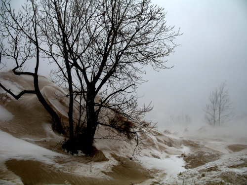 Earth Wind and Snow