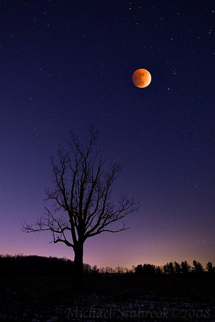 Shadow Moon by Michael Seabrook