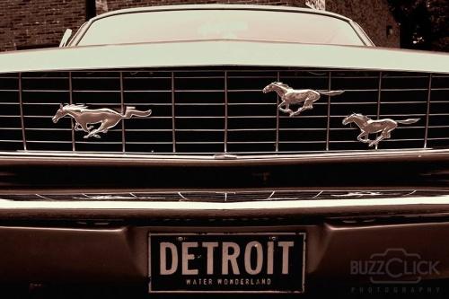 Detroit Mustangs