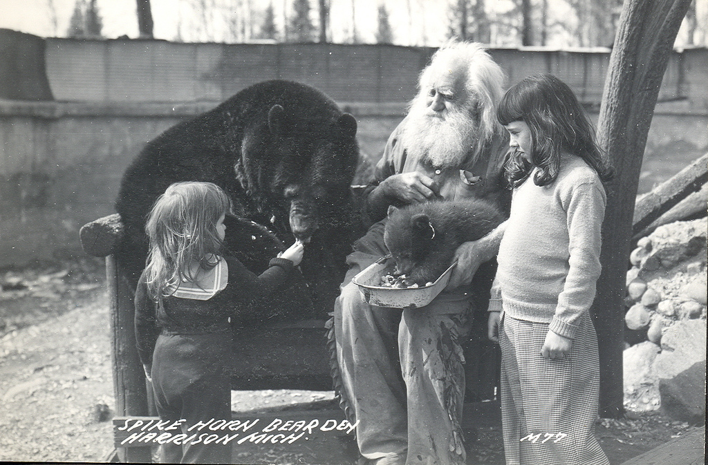 Tbt Spikehorn Meyers And His Bears Michigan In Pictures