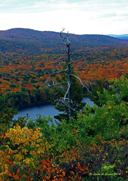 Lake of the Clouds from the Escarpment Trail, Porcupine Mountains