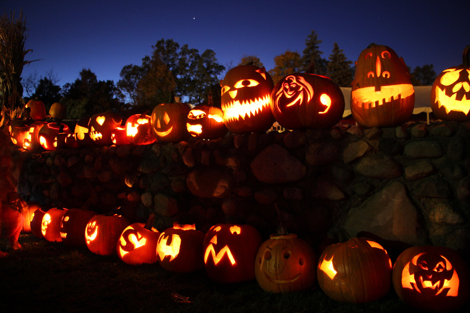 Rochester Hills Stonewall Pumpkin Festival @ Van Hoosen Farm