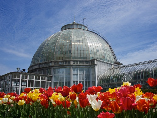 Belle Isle Conservatory - Detroit, Michigan