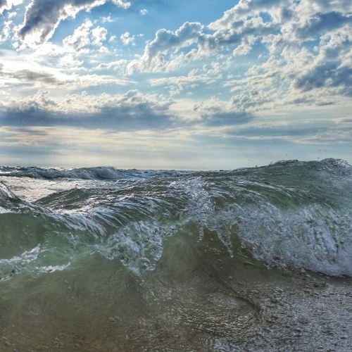 Lake Michigan Rolls
