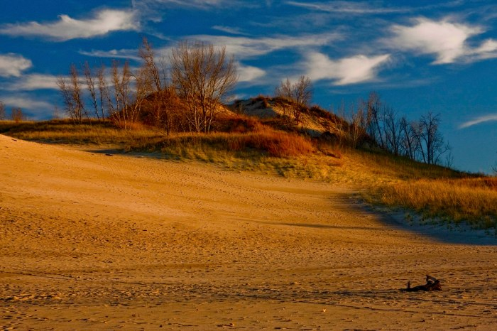 Warren Dunes State Park Sawyer Michigan