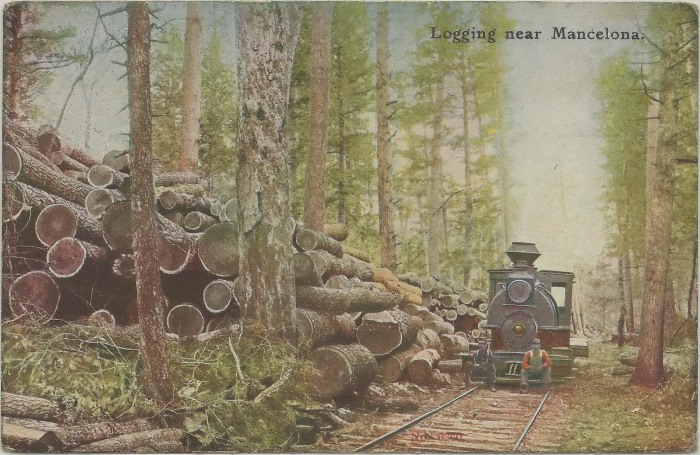 Mancelona Logging and a Shay Locomotive