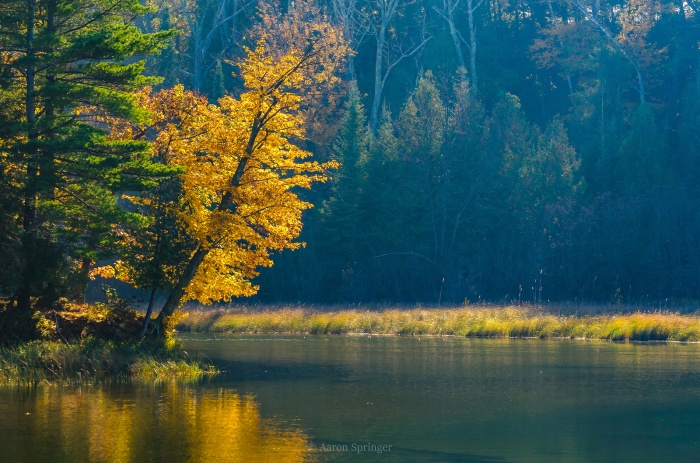 fall-color-on-the-platte-river
