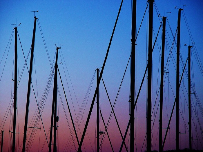 Sail Boat Masts - Macatawa, Michigan by Lita Sandy