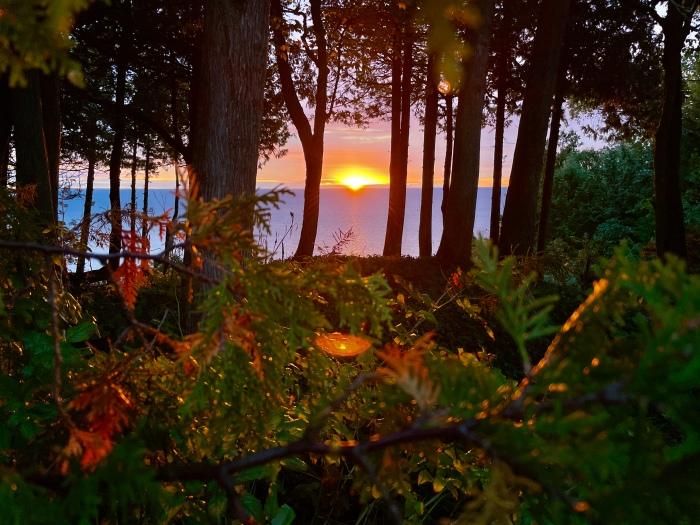 Sunrise 1000 by Bugsy Sailor