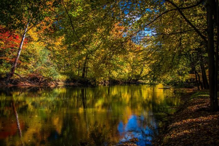 Riverbank Reflection by Jeff Dehmel